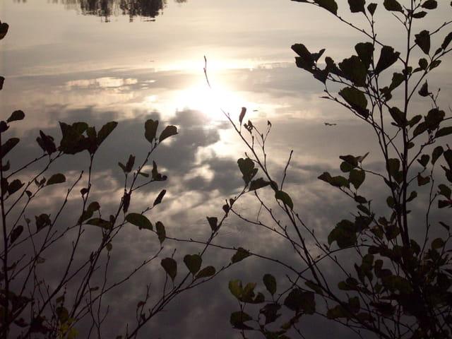 Ciel dans le reflet de l'étang