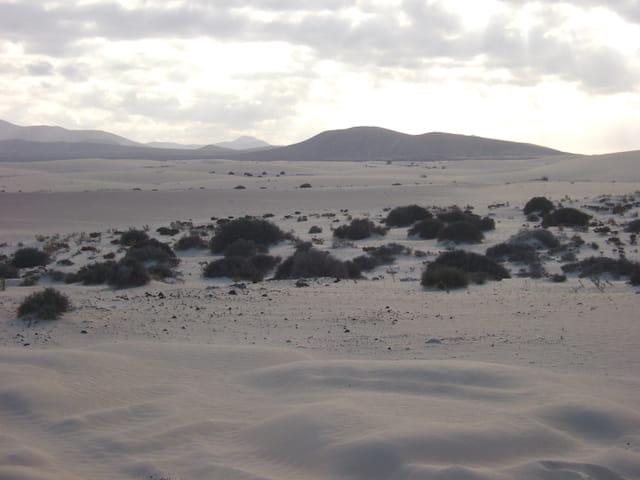 Ciel gris sur le désert