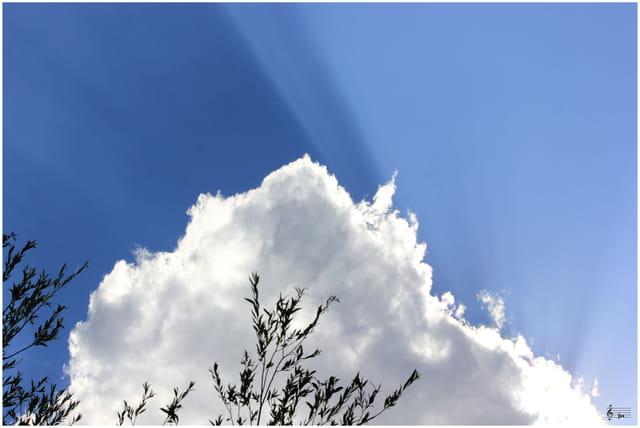 Ciels au naturel