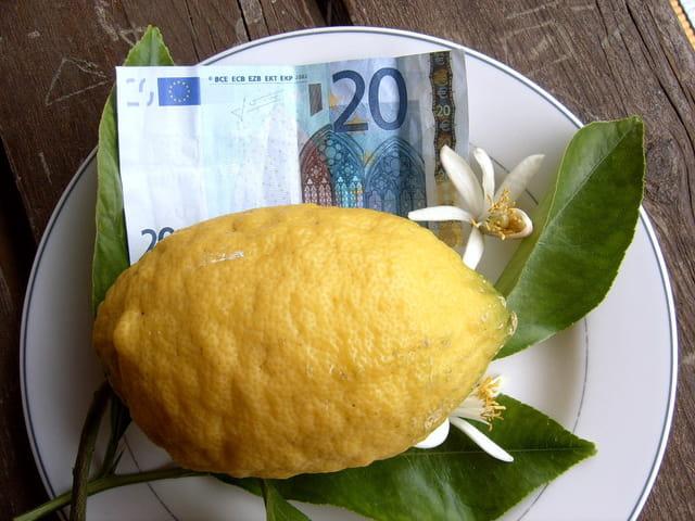 Citron de 500 g pour 20 �