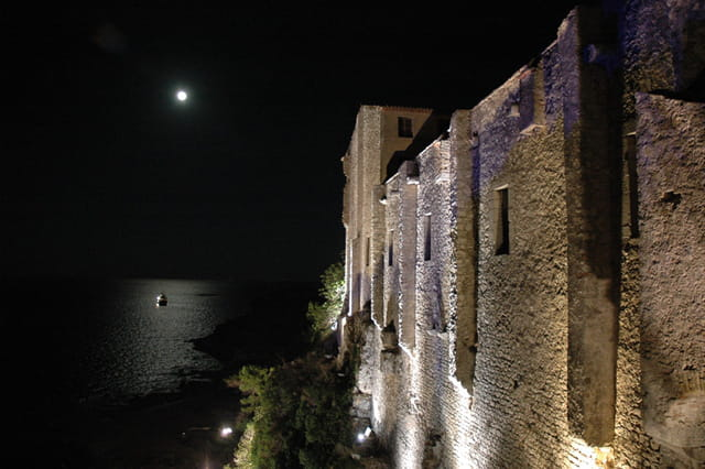 Clair de lune sur le fort