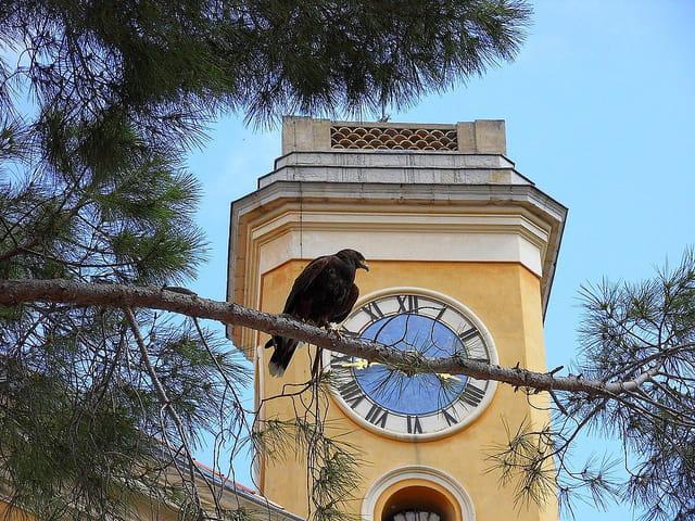 Clocher de l'église Notre Dame de l'Assomption (5)
