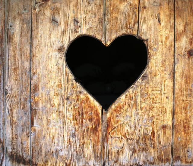 Coeur de bois tendre