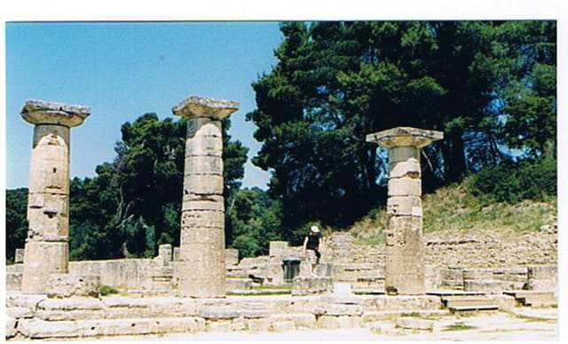 Colonnes ioniques du Temple d'Apollon