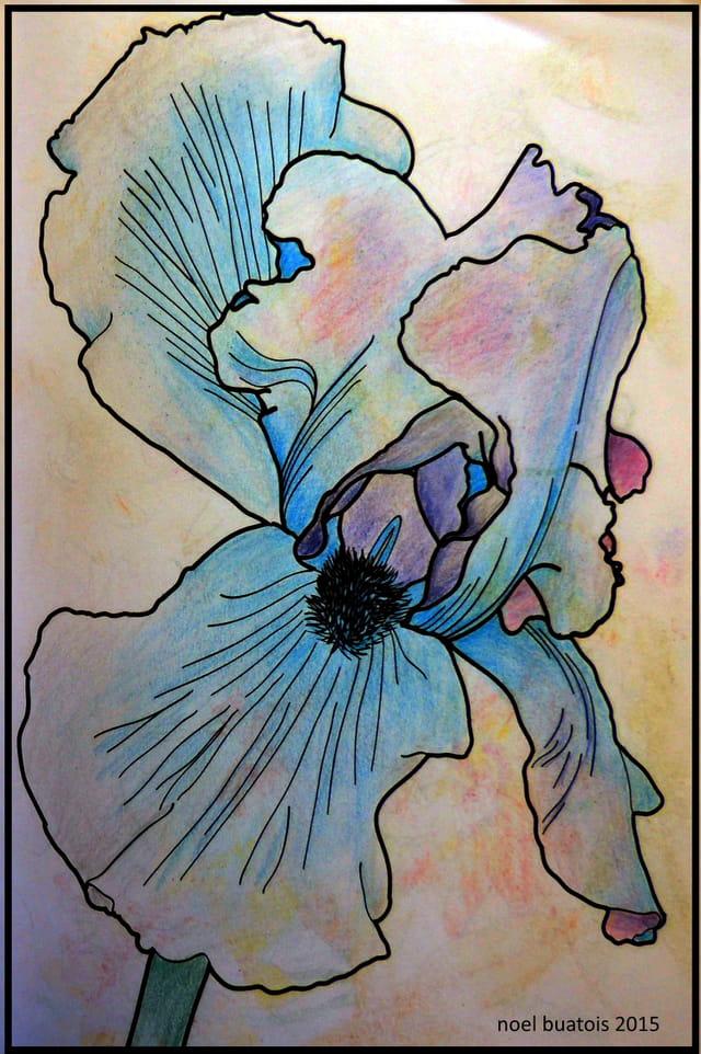coloriage zen par noel buatois sur L'Internaute