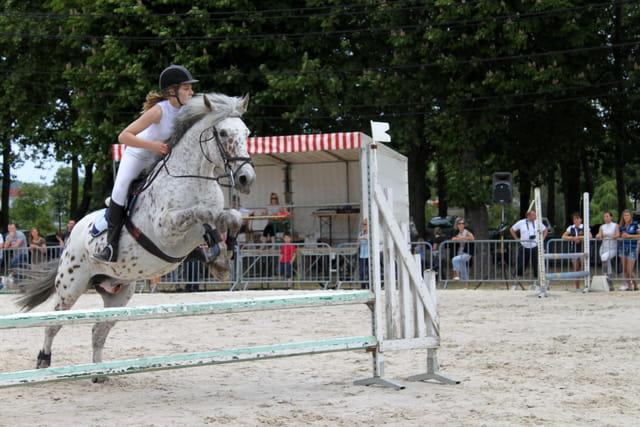 Concours saut d'obstacles