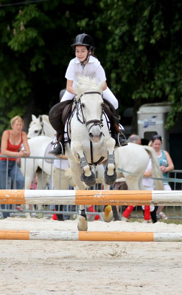 Concours saut d'obstacles (2)