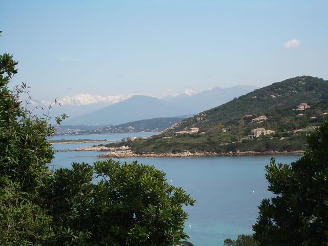 Corse 2010