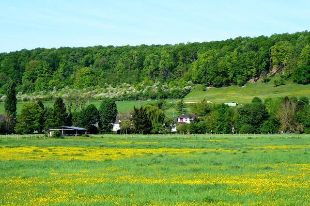 Coteau et prairie de mon village au printemps