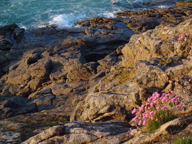 Couchant sur les rochers