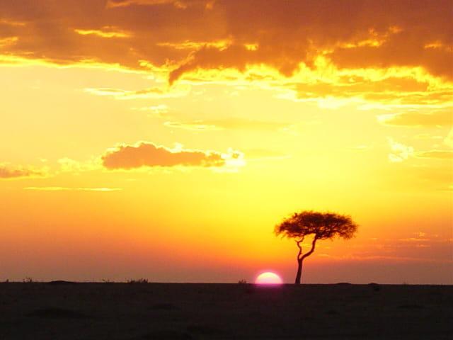 Coucher de soleil sur Masai Mara