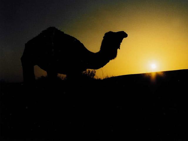 Coucher de soleil Tunisen