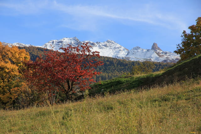 Couleurs automnales dans les Alpes suisses