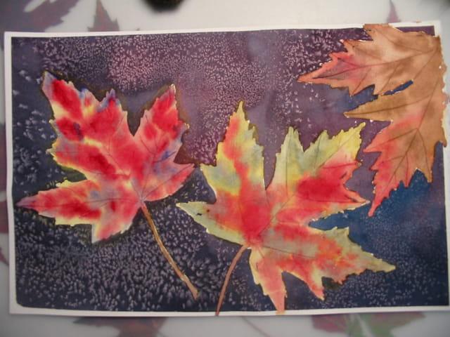 Couleurs d'automne dans les laurent