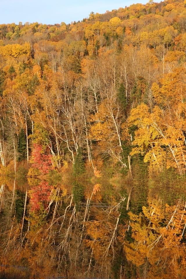Couleurs d'automne et reflet