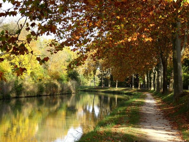 Couleurs d'automne sur le Canal du Midi