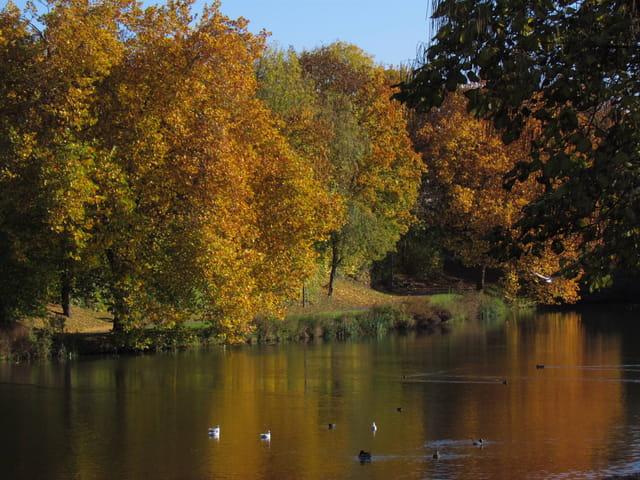 Couleurs d'automne sur le lac