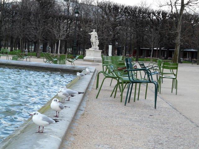 Coup de Vent sur un bout de Paris