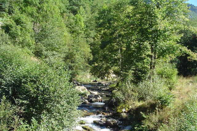 Cours d'eau en Ariège