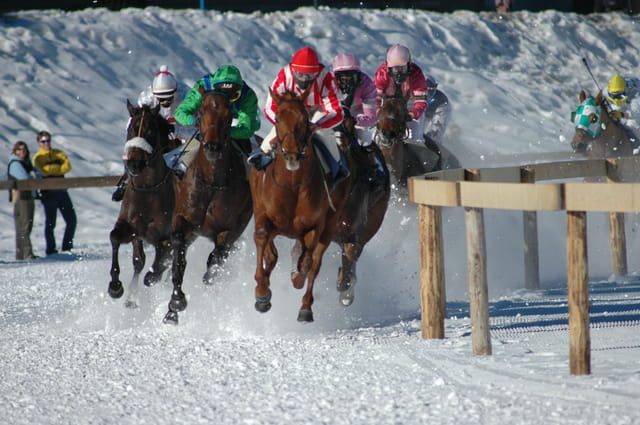 Course de chevaux sur la neige