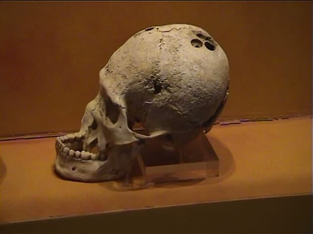 Crâne Maya