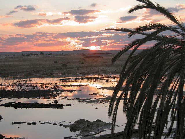 Crépuscule à Siwa