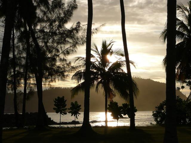 Crépuscule seychellois
