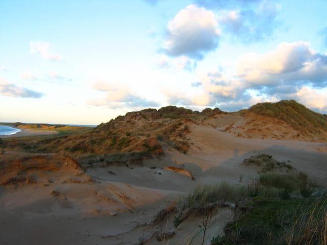 Crépuscule sur la dune