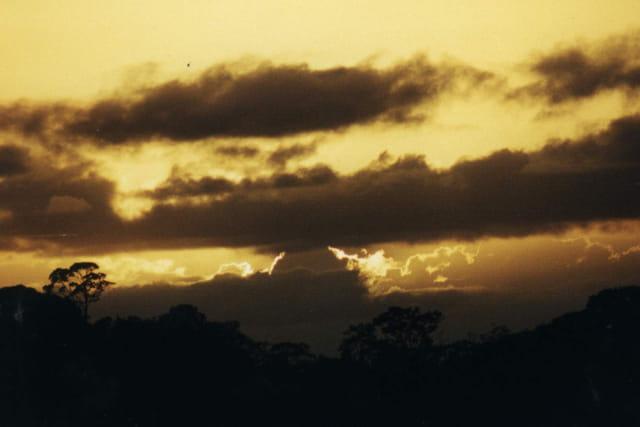 Crépuscule sur la forêt amazonienne