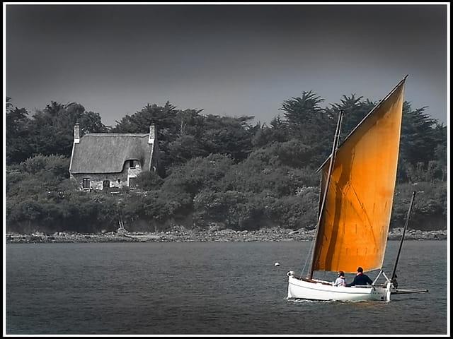 Croisière dans le golfe du Morbihan...
