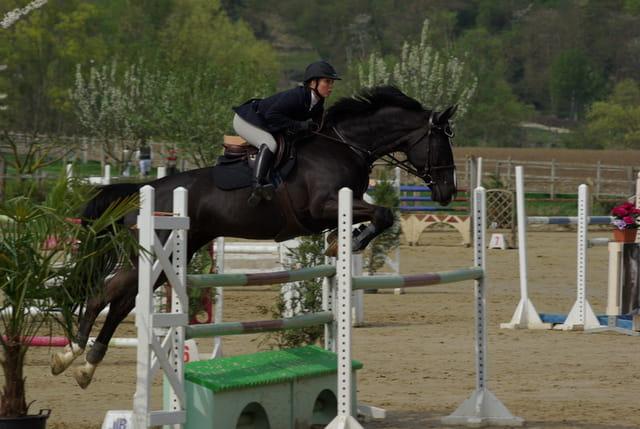 CSO Jumping