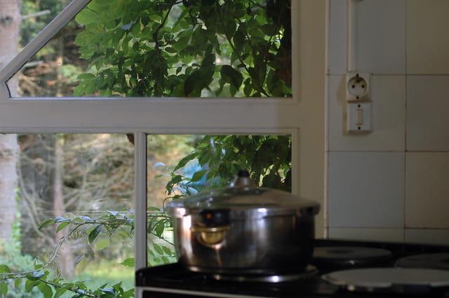 Cuisine et nature par brigitte sinding sur l 39 internaute for L internaute cuisiner