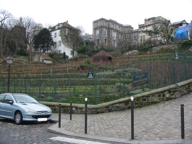 Cuvée Montmartre