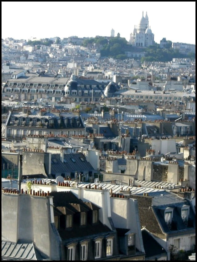 Damier de toits parisiens
