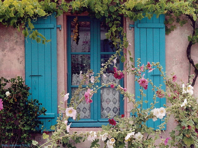 Dans l'esprit île d'Aix