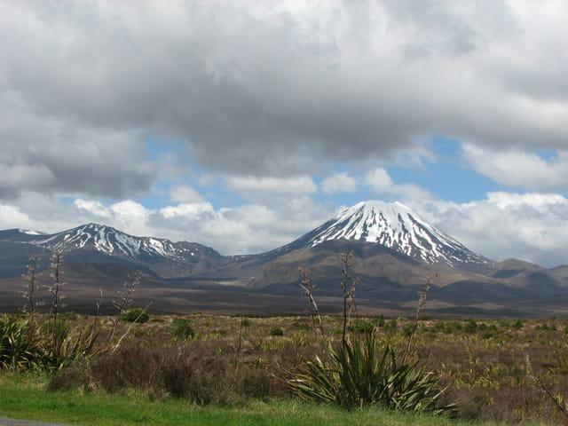 Dans le Parc du Tongariro