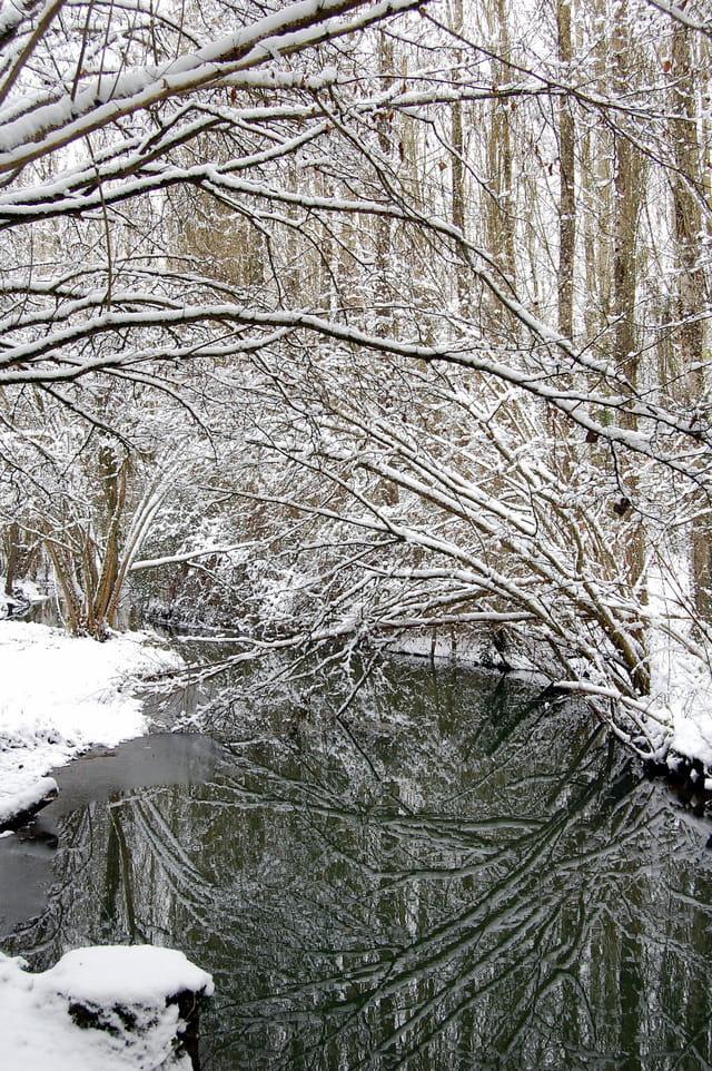 Dans le silence du froid