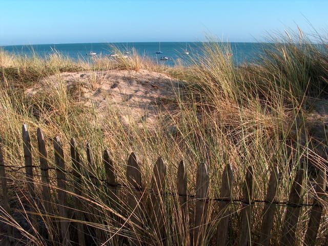 Dans les dunes et les oyats...