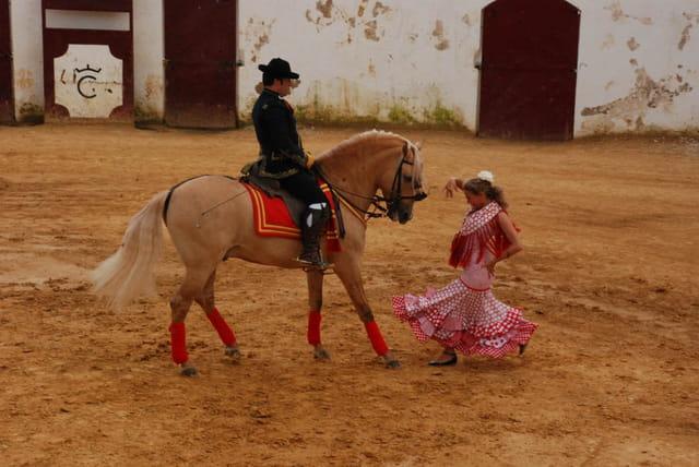 Danseuse de flamenco avec cheval