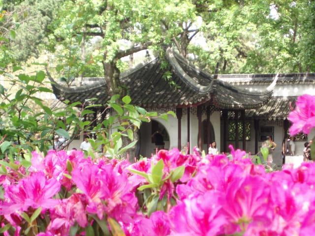 De retour en chine 2 ans après