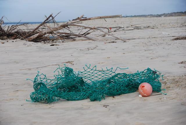 Déchets de plage en hiver