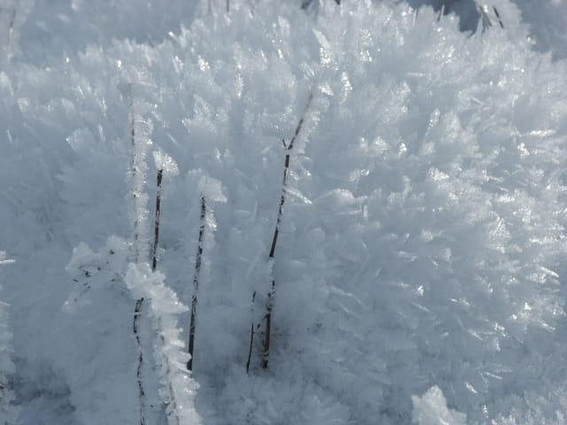 Plume de glace