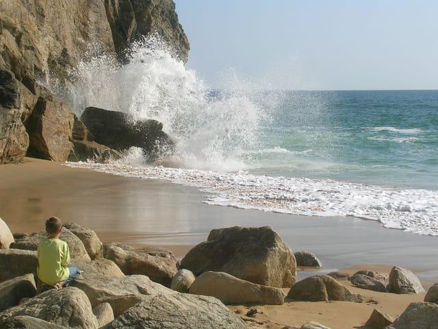 Découverte de la côte sauvage