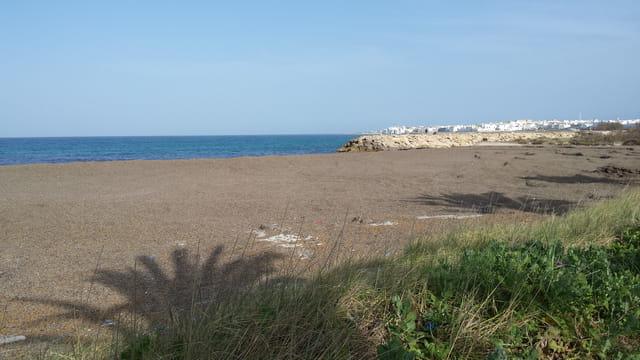 défense écologique a Mahdia en Tunisie