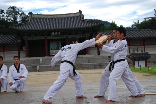 Démonstration Teakwondo