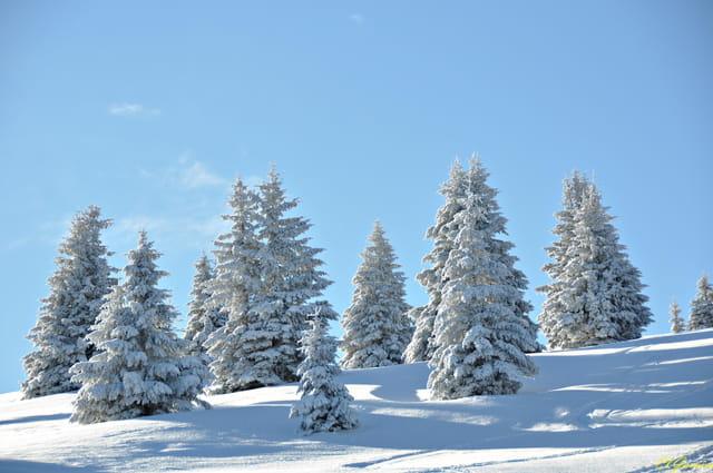 Dernières chutes de neige