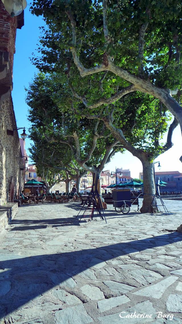 Derrière la plage du Boramar...