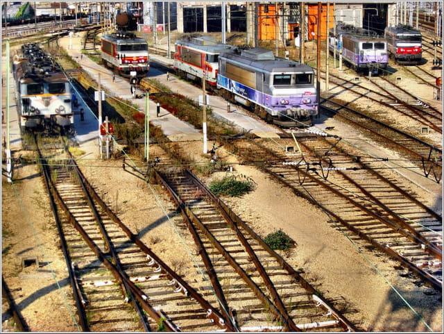 Des locomotives au repos