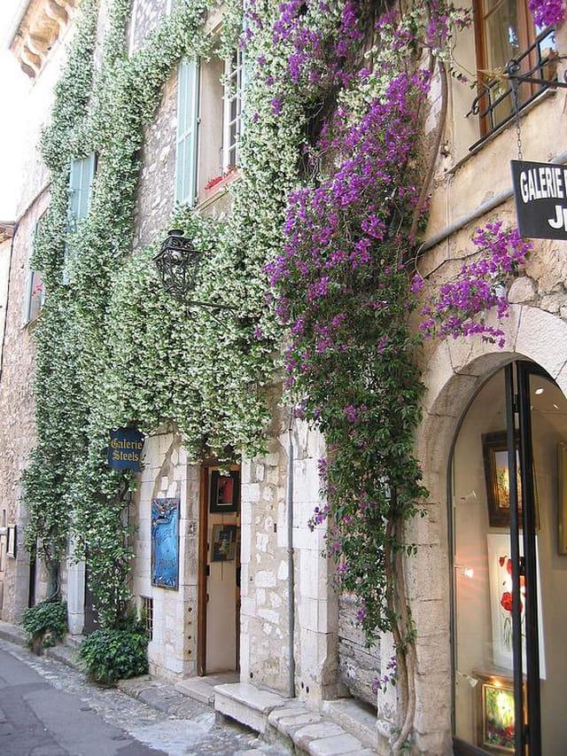 Des murs en fleurs...
