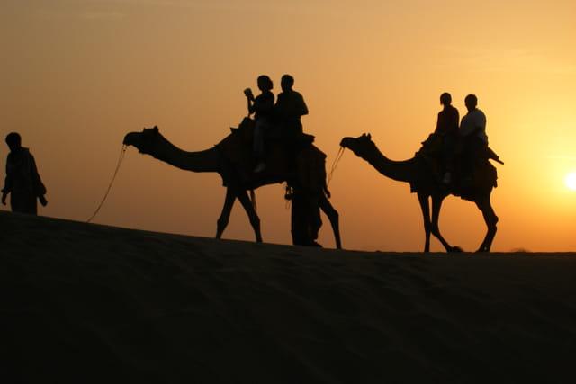 Desert du Thar